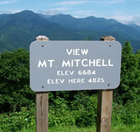 Mt Mitchell State Park in Burnsville NC.