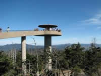 Clingmans Dome in Great Smoky Mountains Park.