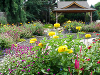 Fun things to do in Hendersonville NC : Bullington Gardens in Hendersonville NC.
