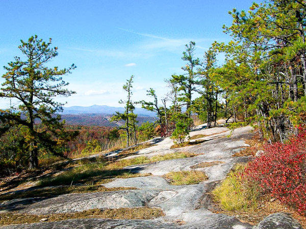 Fun things to do in Hendersonville NC : Cedar Rock Mountain in DuPont State Forest in Hendersonville, NC.