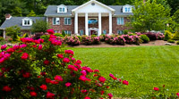 Fun things to do in Hendersonville NC : Northern Lights Bed and Breakfast in Hendersonville NC.